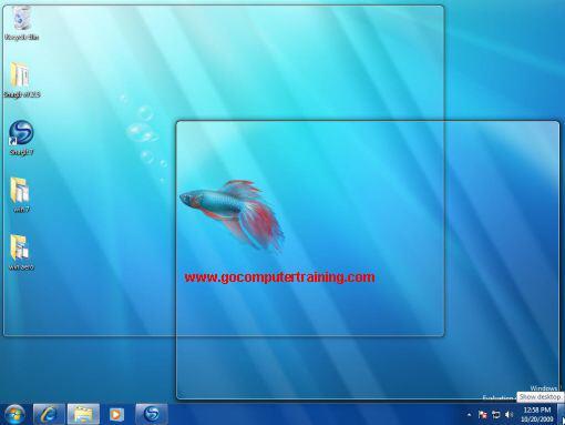Windows 7 aero peek view